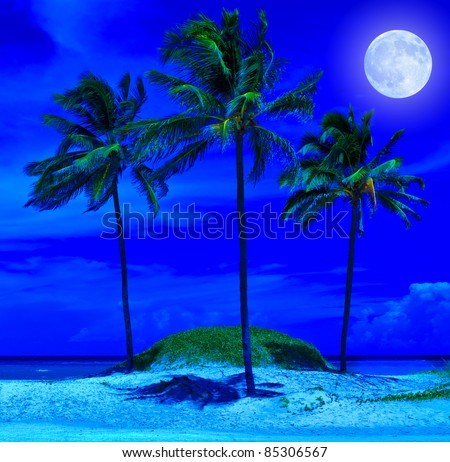 Tropical beach at night with a bright full moon - stock photo