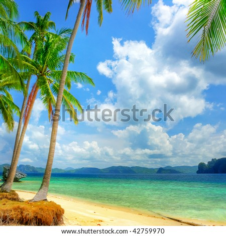 tropical beach background - stock photo