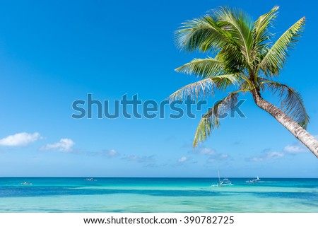 Tropical beach background from Boracay island with coconut palm tree leafs, blue sky and turquoise sea water, Travel Vacation - stock photo