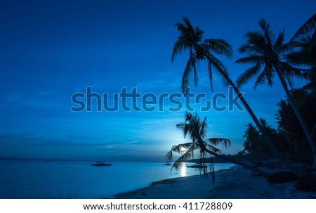 Tropical beach background of night view from Dumaluan Beach at Panglao Bohol island with  cloudy blue sky full moon and palm trees. Travel Vacation - stock photo