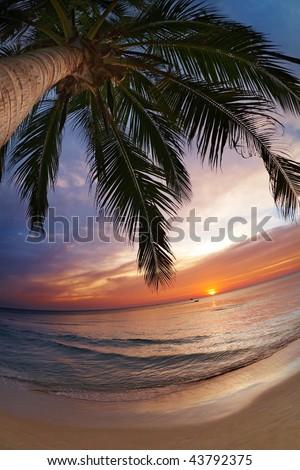Tropical beach, Chang island, Thailand, fisheye shot - stock photo