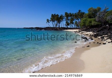 tropical beach (Hawaii) - stock photo