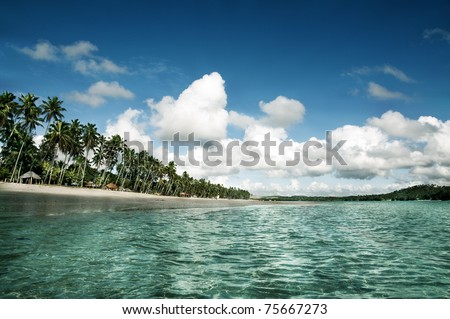 Tropical Beach in Brazil, South America/Carneiros Beach - stock photo