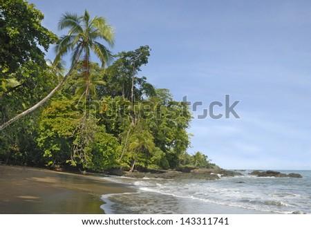 Tropical Beach in Corcovado National Park, Costa Rica - stock photo