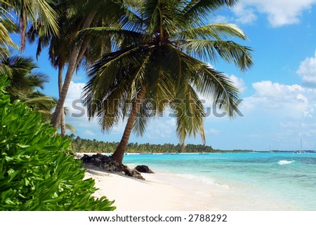 tropical beach in Dominican Republic - stock photo