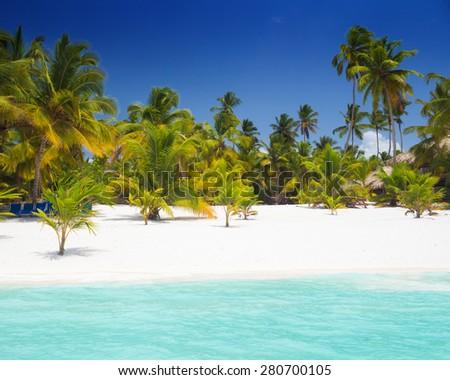 Tropical beach in Saona Island, Dominican Republic - stock photo
