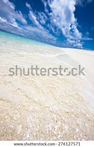 Tropical beach in the Maldives, vertical view
