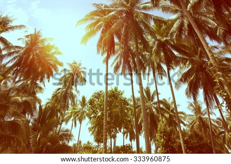 Tropical beach landscape with coconut palm trees at sunset. Paradise design banner background. Vintage effect.  - stock photo