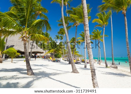 Tropical beach near tourist resort with palm trees