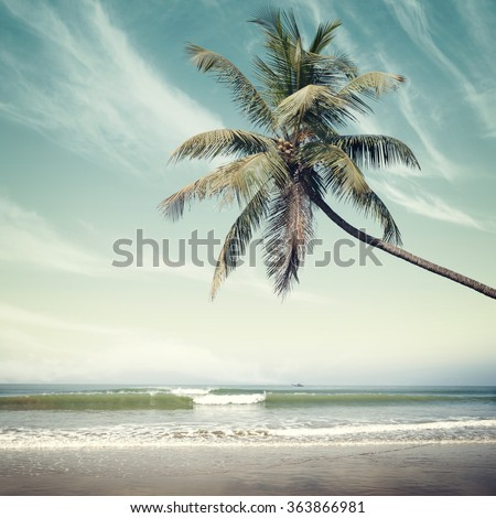 Tropical beach of a summer day background