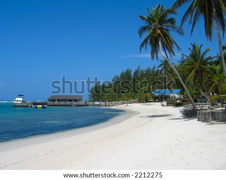 Tropical beach scene, including palm trees and dive boat at dock. - stock photo