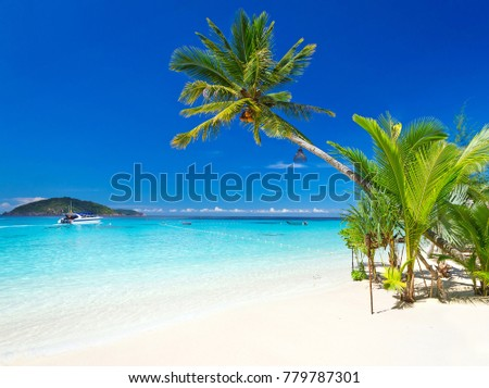 Tropical beach scenery at Caribbean Sea