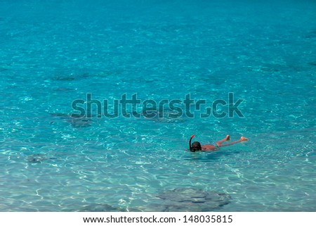 Tropical beach, Similan Islands, Andaman Sea, Similan Islands Sea's most beautiful white sand beaches for relaxing summer and diving underwater beautiful as anywhere in the world.Thailand