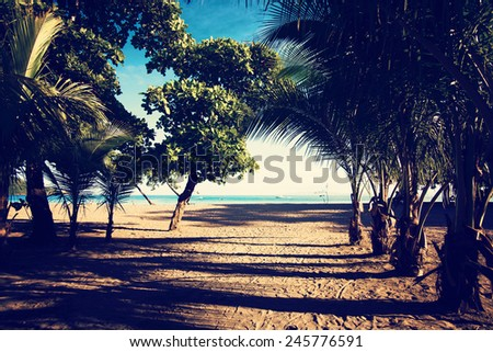 Tropical beach. Vacation, travel, summer, relaxation and lifestyle concept.  - stock photo