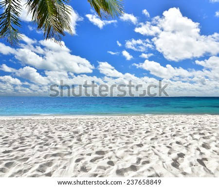 Tropical beach with blue sky -- Idyllic tropical scenery - stock photo