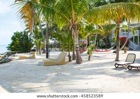 Tropical beach with chaise longs and hammocks near palms on sandy beach, Key West, Florida, USA - stock photo