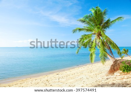 tropical beach with coconut palm and sea - stock photo