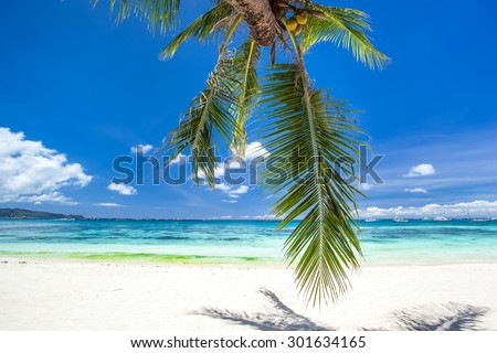 Tropical beach with coconut palm tree leafs, white sand and turquoise sea water, Travel Vacation - stock photo