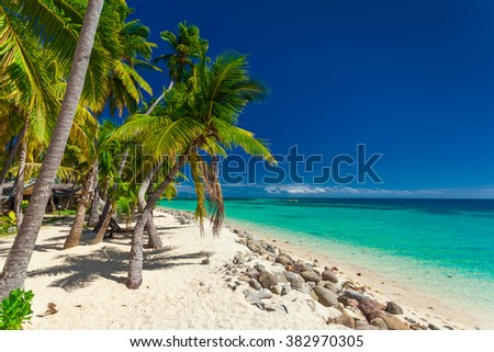 Tropical beach with coconut palm trees and clear lagoon on Fiji Islands - stock photo