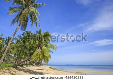tropical beach with coconut palm trees. Koh Samui, Thailand