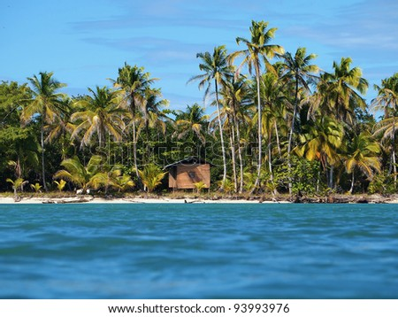 Tropical beach with coconut trees and a hut, Caribbean - stock photo