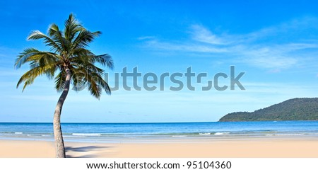 Tropical beach with exotic trees on the sand. Luxury destination. - stock photo