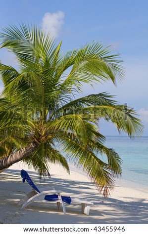 Tropical beach with lounge