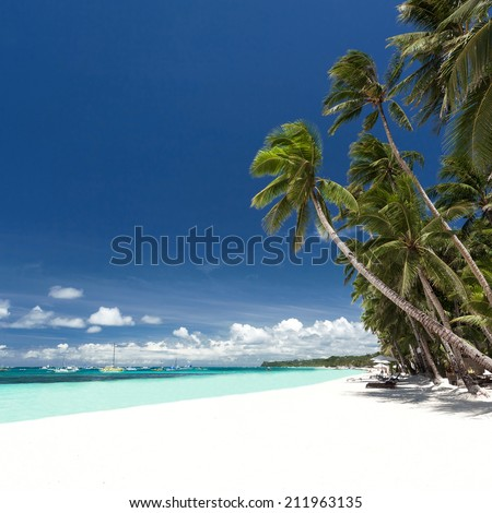 Tropical beach with palm and white sand, Philippines, Boracay - stock photo