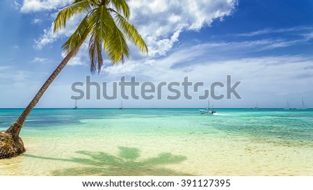 Tropical beach with palm tree and fisherman boat.
