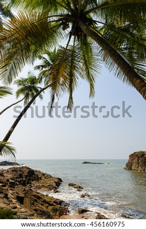 Tropical beach with palm trees.