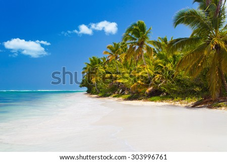 Tropical beach with palm trees and white sand in Dominican Republic - stock photo