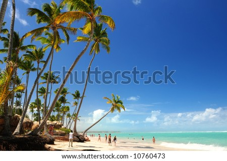 Tropical beach with palm trees on Caribbean island - stock photo