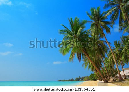 Tropical beach with palm trees, Thailand - stock photo