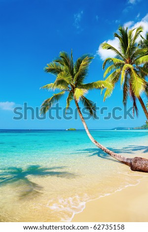 Tropical beach with palms, Kood island, Thailand - stock photo