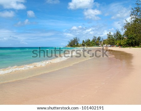 Tropical beach with trees and umbrellas - stock photo