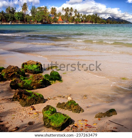 tropical beach with turquoise water. - stock photo