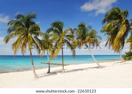 Tropical beach with white sand, palm-trees and blue ocean on Maria la Gorda, Cuba - stock photo