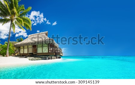 Tropical bungalow on the amazing beach with a palm tree - stock photo