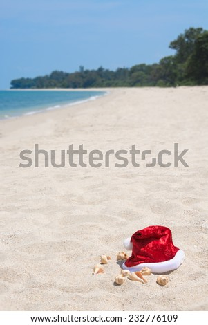 Tropical Christmas on a tranquil beach - stock photo