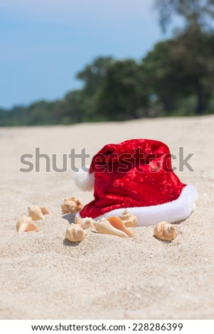 Tropical Christmas on a tranquil beach with trees background  - stock photo