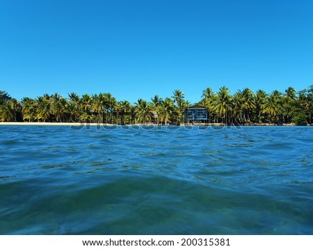 Tropical coast at the horizon with a beach house and coconut trees - stock photo