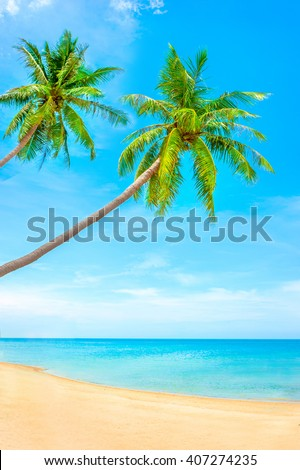 Tropical coast, beach with hang palm trees. Holiday and Vacation - stock photo