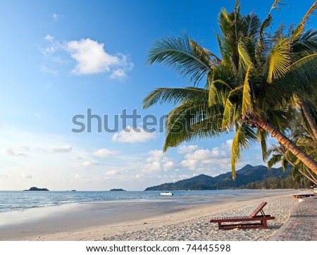 Tropical coastline with palm trees and beautiful sand. Exotic beach scene. - stock photo