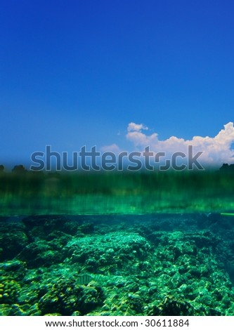 Tropical Coral Reef and Blue Sky Over Under - stock photo