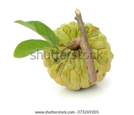 tropical custard apple fruit - stock photo