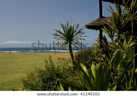 Tropical Dar es Salaam - stock photo