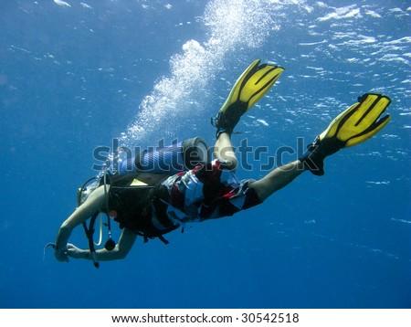 Tropical Diver - stock photo