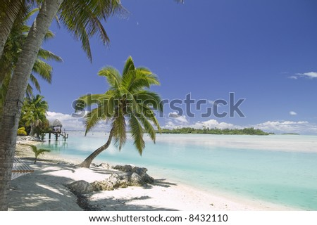 Tropical Dream Beach Paradise of the South Pacific