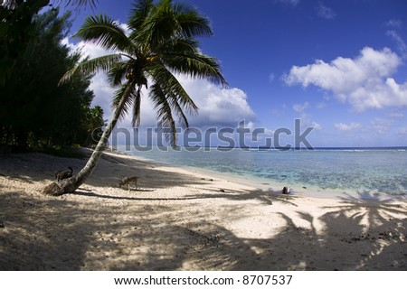 Tropical Dream Beach Paradise of the South Pacific - stock photo