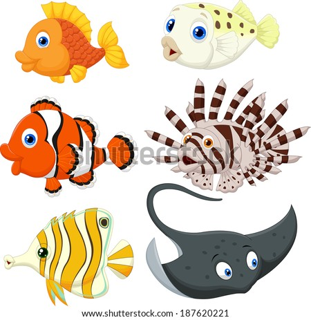 Tropical fish cartoon - stock photo